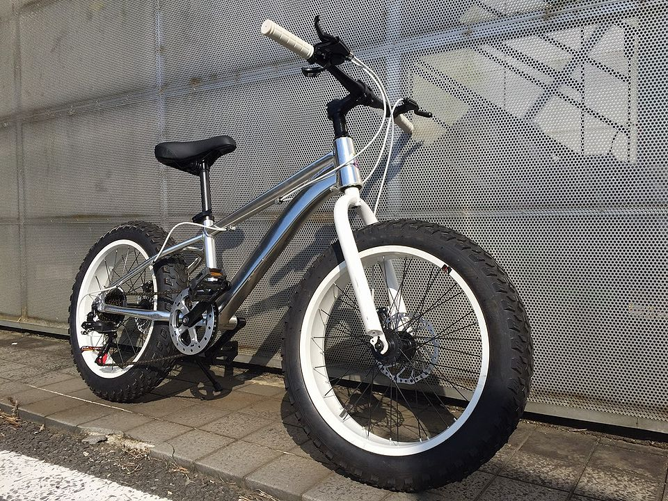 stryke BMX fat bike white