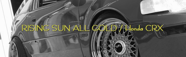 Stanceconcept Rising Sun All Gold / Homda CRX